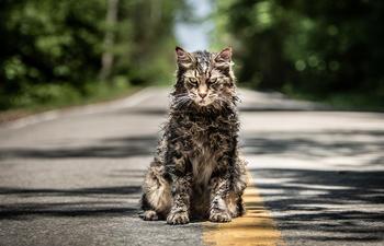 Bande-annonce en français du nouveau Pet Sematary de Stephen King